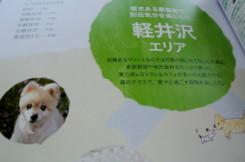20130201wanko2.JPG