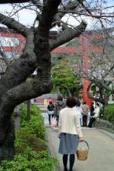 20130324RYOKO6.JPG
