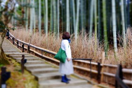 http://www.coriss.jp/blog/images/20160304KYOTO13.JPG